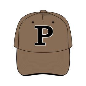 Panthers Team Cap Brown